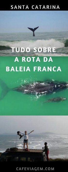 Rota da Baleia Franca - Santa Catarina.  Um roteiro que une três belos destinos da costa catarinense: Garopaba , Imbituba e Laguna.