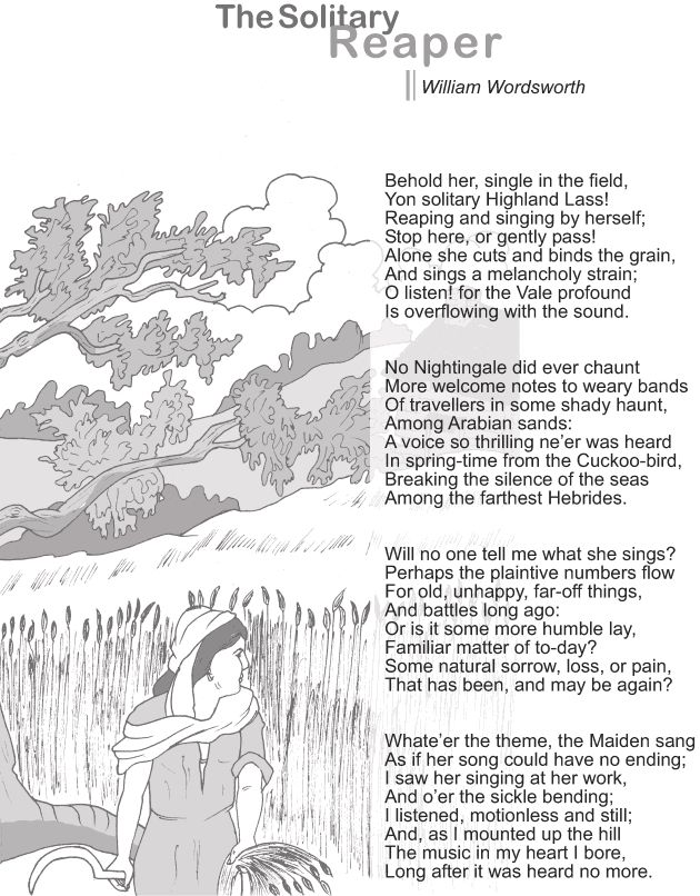 solitary reaper summary pdf