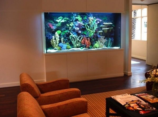 This looks quite cool,maybe a little bit big but we can have one in the living room