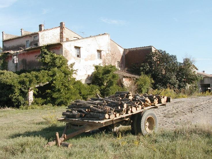 La fattoria abbandonata di Lavaiano