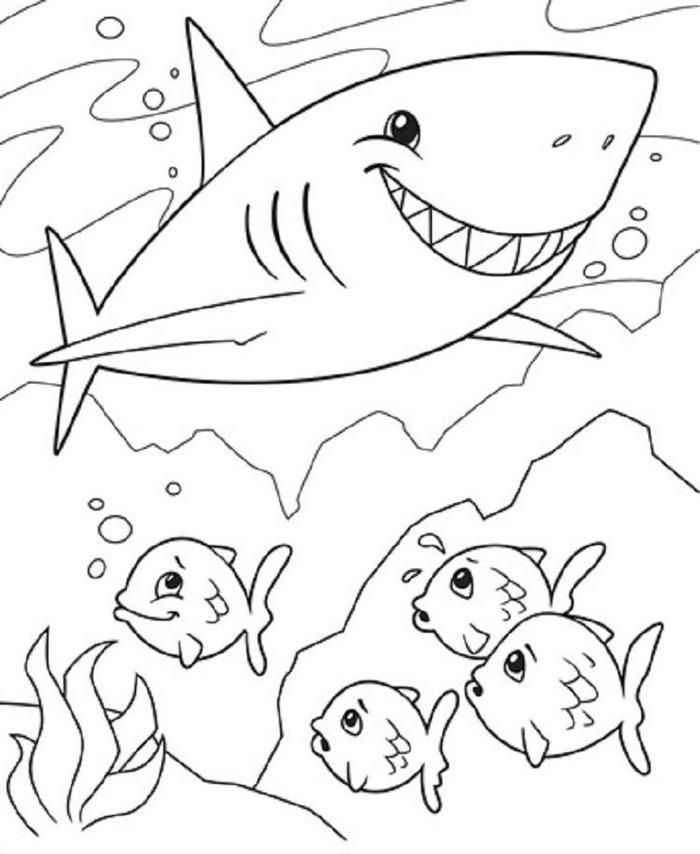 Shark And Fish Coloring Pages Shark Coloring Pages Fish Coloring Page Crayola Coloring Pages