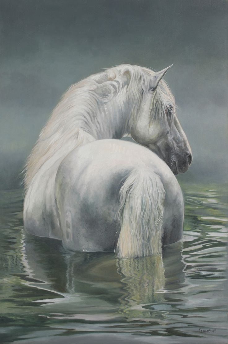 Wild White Beauty Standing in Water. (by Carolle Beaudry).