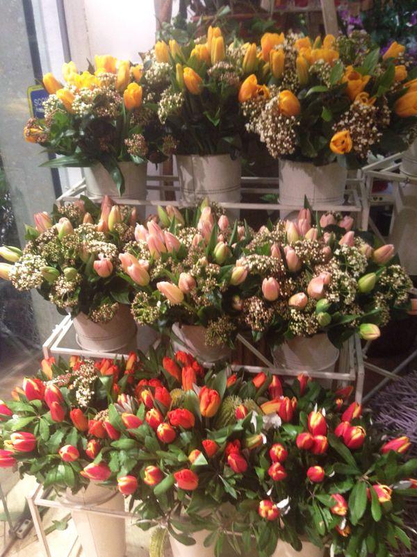 Il tuo fiorista a Roma: basta chiamarci 06.3054546. Consegna entro GRA di Roma è GRATIS www.laflorealedistefania.it FB: fb.com/LaFlorealediStefania/ #fiori #consegna #roma #composizioni #festa #compleanno #matrimonio #battesimo #fioristaroma #floristrome #flowerdelievery #consegnafiori #rose #gerbere #fresie #eutoma #lilium #ortensia #tulipani