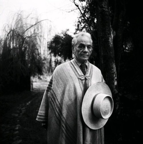 Nicanor Parra by Luis Poirot