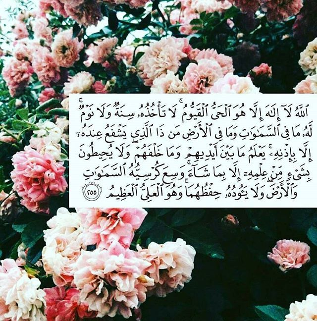 Ayatul kursi. Who here knows it off by heart? I love getting my little sister to recite it out loud whenever we are together or like when I'm in the car driving and so on, she recites it so cute ma shaa Allah. Definitely make a habit to learn as much as you can from our beloved deen. If you don't know, start from the beginning. Get closer to Allah and feel happiness in shaa Allah. #mythoughts #ponderingmuslim