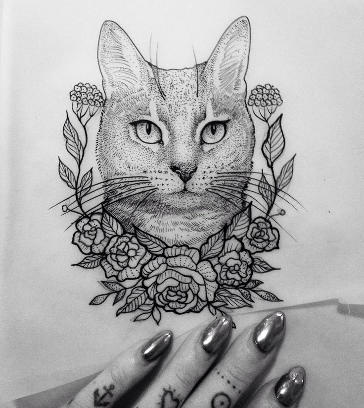 Line Drawing Cat Tattoo : Best cat tattoos images on pinterest