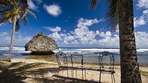 Klar for avslapping i skyggen på Barbados? http://travels.kilroy.no/destinasjoner/karibien/barbados #barbados #beach #paradise #sand #ocean #palmtree