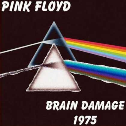interpretation of pink floyds brain damage Brain damage is a song from british progressive rock band pink floyd's 1973 album, the dark side of the moon it was sung by roger waters david gilmour took over as lead vocalist when the band performed it live during the 1994 tour.