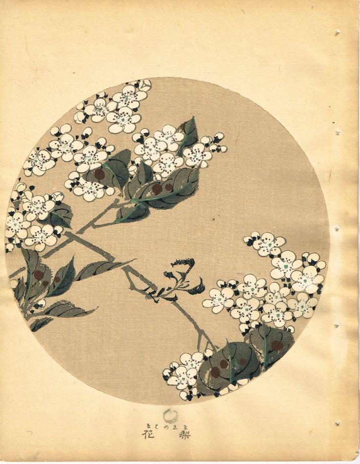 """Japanese antique woodblock print Ito Jakuchu """"Pear blossoms from Jakuchu gafu"""""""