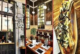 Image result for chef and dog athens