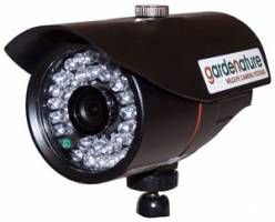 Digital wireless wildlife camera - 4mm. 420tvl