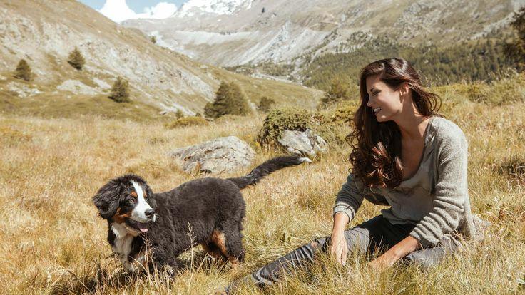 NILE - PhotoShooting Matterhorn  2016  - Fields of Gold - #landscape #switzerland #nature #inspiration