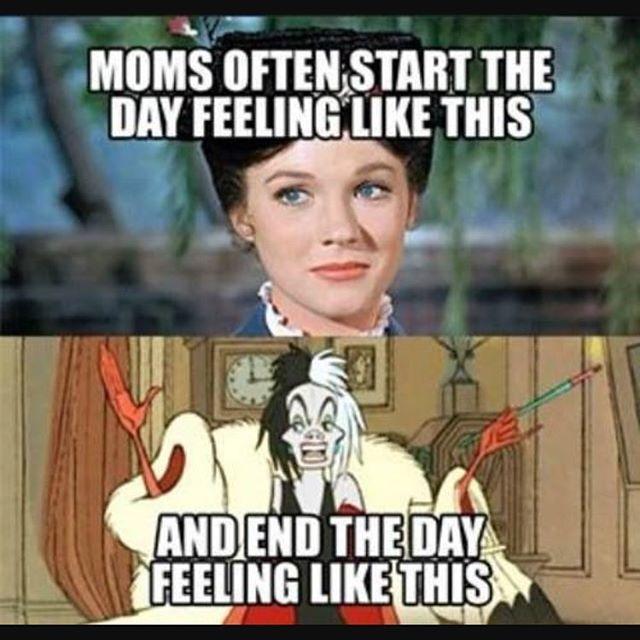 best homeschool humor images mom humor 162 best homeschool humor images mom humor homeschooling and funny stuff