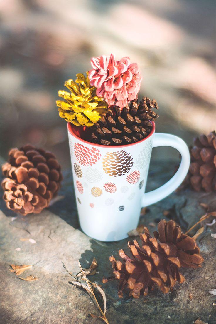 New tea idea: cup of pine cones.
