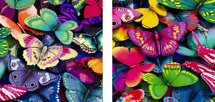 Product code: BFL 2 CANVASES 300mmx300mm R480.00