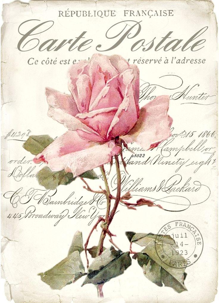 Vintage rose background digital collage p1022 FREE