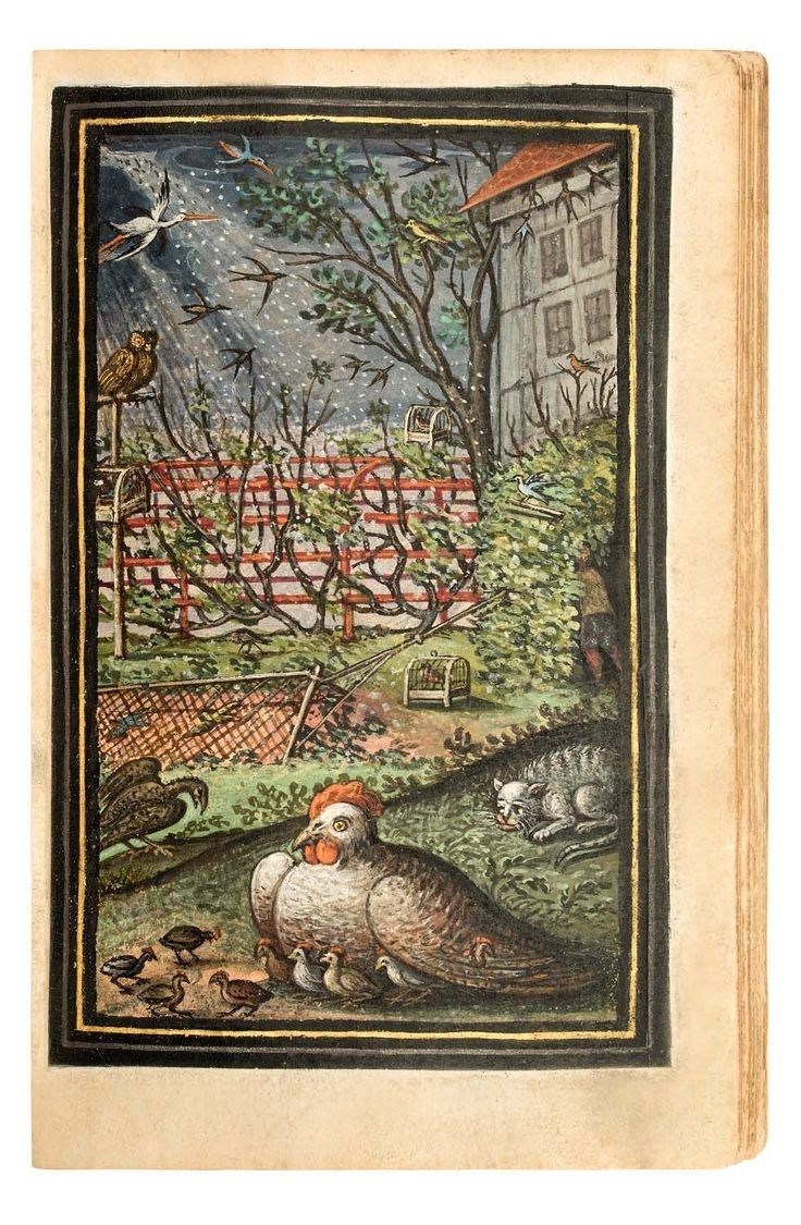 Second edition of this early edifying book. Enhanced by 42 additionally inserted full-page gouache paintings by a German artist.