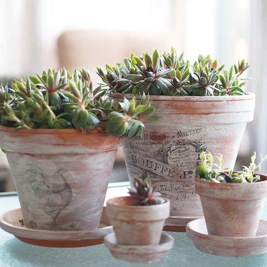 Transform a plain terracotta pot or planter into a unique container for you indoor plants, succulents or container garden. Our ideas include using fabric, watercolor painting, using an image transfer and stenciling the terracotta pot for a fun and pretty way to display your plants.