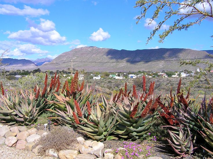 Our Karoo View overlooking the village of Prince Albert
