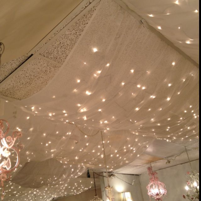 tulle and Christmas lights - I like the concept, adapted for outdoors