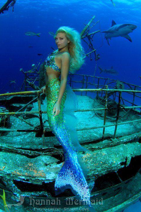 Daryl Hannah Mermaid | Hannah Mermaidfacebookyoutubeiamamermaidtwittermyspace