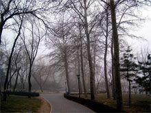 healthy lifestyle winter,  winter care ayurveda tips, winter ayurveda tips, winter ayurveda