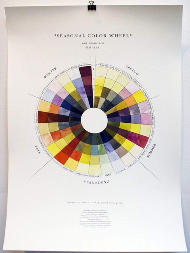 The Seasonal Color Wheel: A Guide to Natural Dyes Made From Seasonal Foods