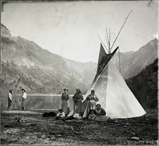 Montana Native Plants: 17 Best Images About Native American Families On Pinterest