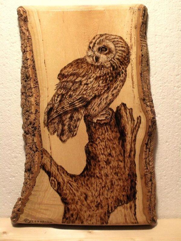 Owl Pyrography Art Artwork By Carlo Ferrario Owls