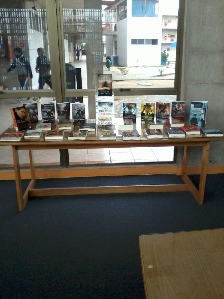 Exposición de nuevos libros de literatura en Melipilla.