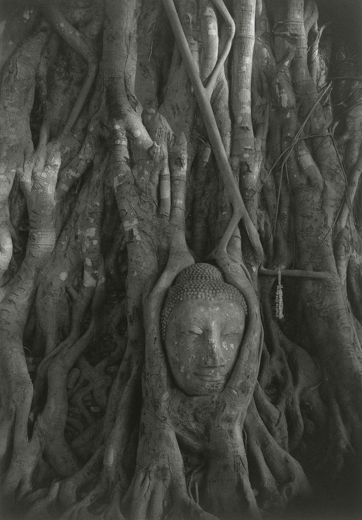 KENRO IZU    Thailand 36, 1998    Platinum-Palladium Print    From the Series 'Sacred Places'