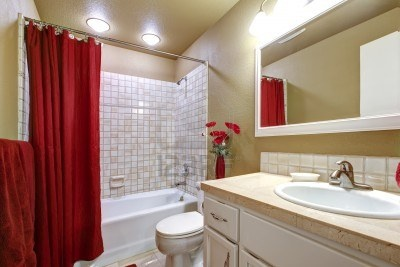 Small simple beige and red bathroom with white sink. Stock Photo - 14287681-but for half bath- tan walls, red flowers on toilet