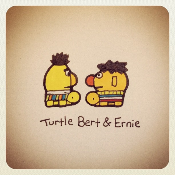 Turtle Bert & Ernie #turtleadayjuly - @turtlewayne- #webstagram