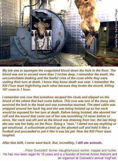 For those who make a mockery of what it means to be a vegan, THIS is what you are actually making fun of (you're just too inbred, uneducated and ignorant to realise it).  We don't care that you laugh at us, but we DO ***ING CARE about the lives you are making a mockery of with your beef/bacon 'jokes'!  You deserve to eat their meat even LESS than those who don't make a mockery of it at least.  You are the scum that lies at the bottom of that barrel full of those who exploit and abuse…