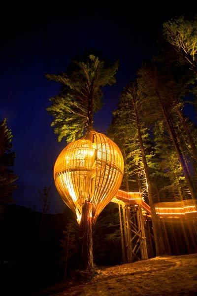 Pod in The Sky Near Auckland, New Zealand If you plan on booking this slatted event venue hugging a Redwood tree 10 meters above ground,...