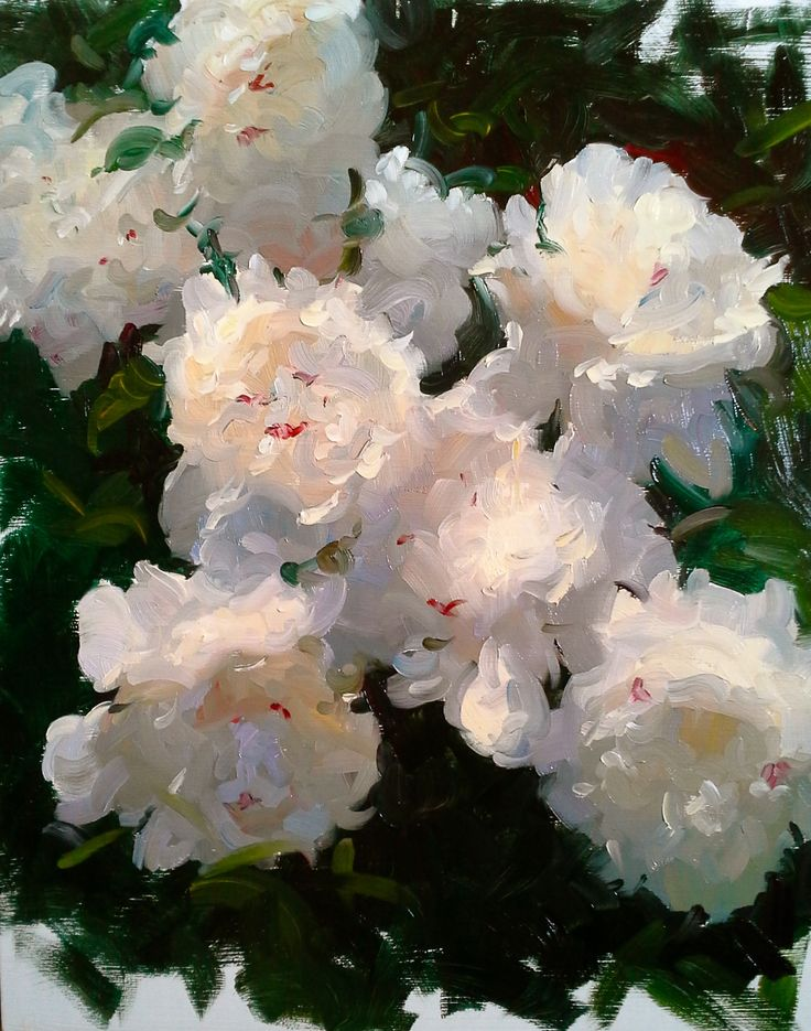 """Sunlit Peonies"" Dennis Perrin oil on board 20"" x 16"" contact…"