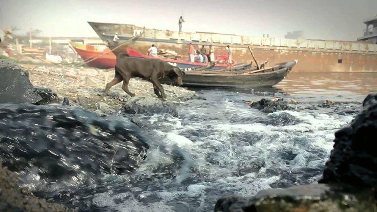 """Z kolei publiczność doceniła dzieło Raihana Ahmmeda pt. """"Deadline"""", prezentujące wyniszczanie rzeki Buriganga przez działalność bangladeskiego miasta Dhaka.  Autor filmu otrzymał nagrodę w wysokości 1.000 euro."""