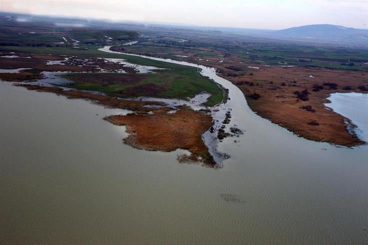 Delta of Evros river, Greece