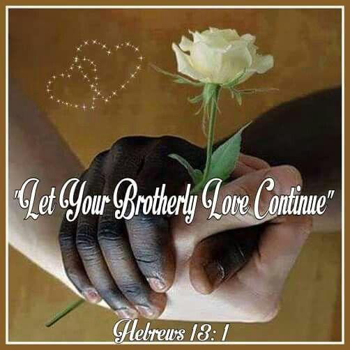 Heb.13:1 - 2016 year text -        www.jw.org