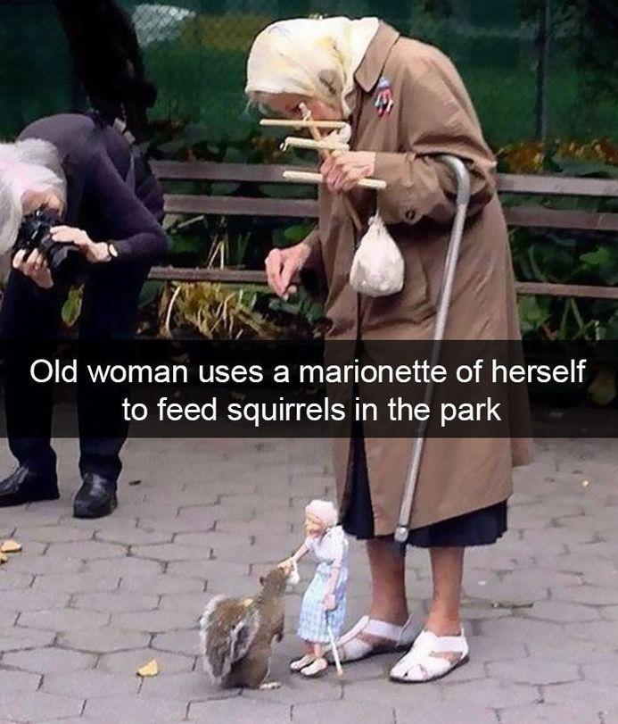 Funny Animal Snapchat – 30 Pics