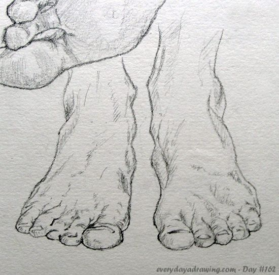 """""""Drawing of feet from the front"""" - Davy on Everyday a Drawing"""