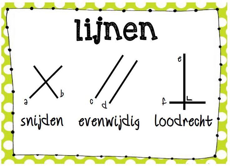 Poster wiskunde: soorten lijnen © Sarah Verhoeven
