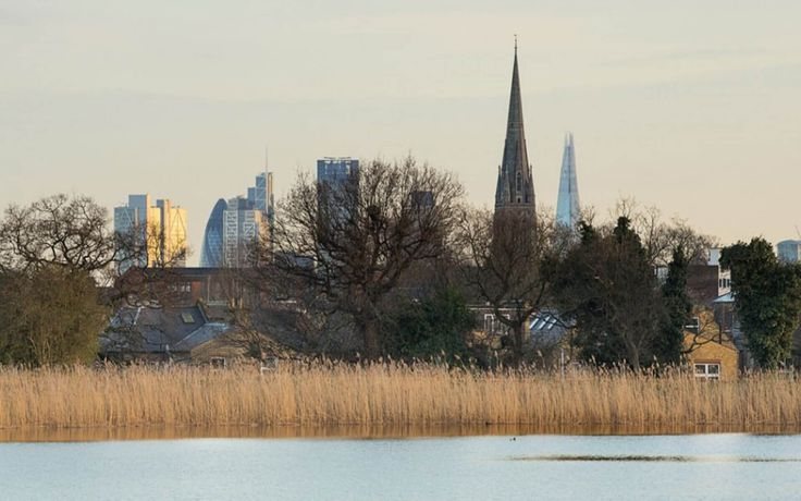 London The Woodberry Wetlands 2016