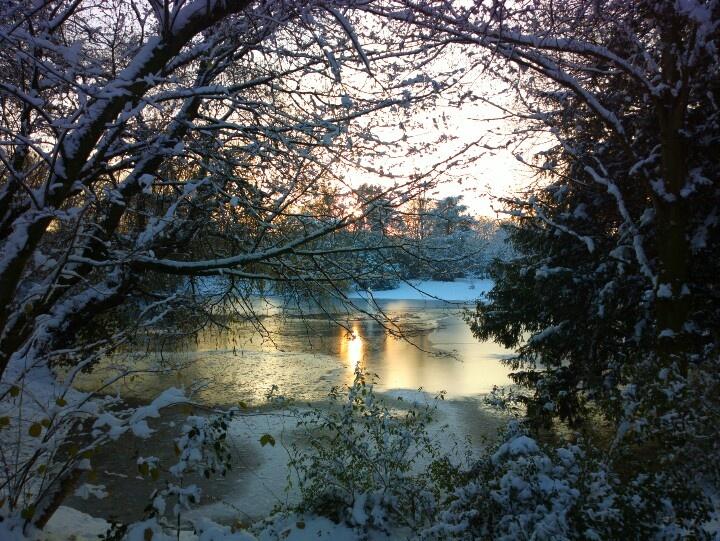 Central Park Neuss City shot with Nokia 808 #Pureview