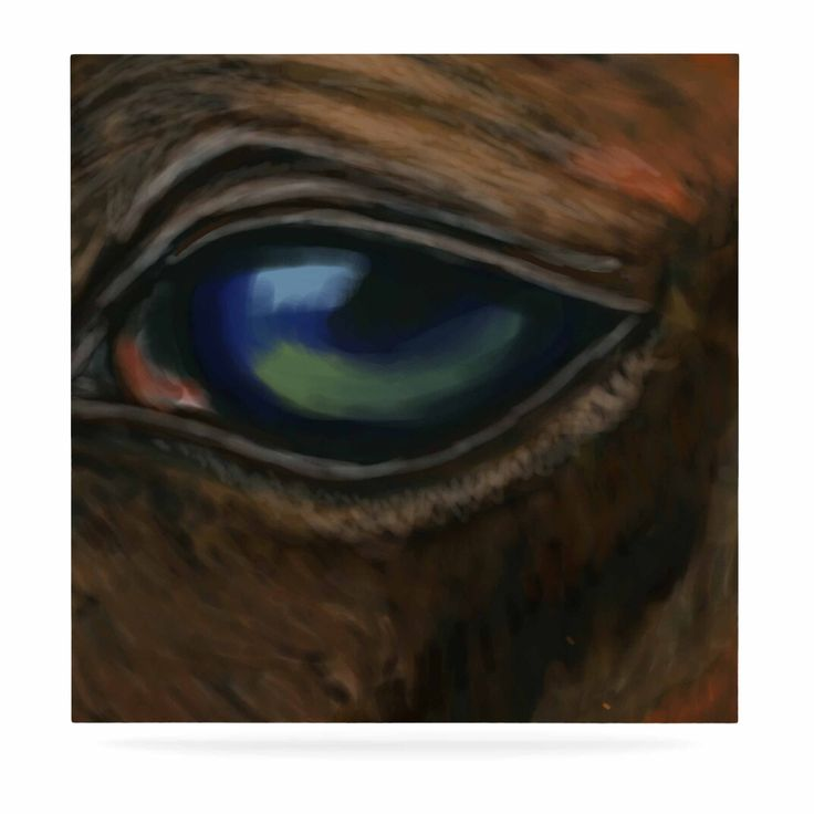 "Cyndi Steen ""Arabian Eye"" Brown Animals Luxe Square Panel"