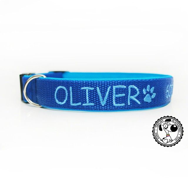 Obojek s vyšitým jménem | Collar with embroidered name #oliver #embroideredname #collarwithembroidery #collarwithname #bluecolor #paw #dogpaw #byblackberry #blackberrycollars #obojkyblackberry #odblackberry #tlapka #psitlapka #obojeksvysitim #obojeksejmenem #vysitejmeno #modra #modrabarva #dog #goodsfordogs #embroidery #pet #pes #vysivka #vecipropsy #goodjob #nice #newcollar #krasny #novyobojek