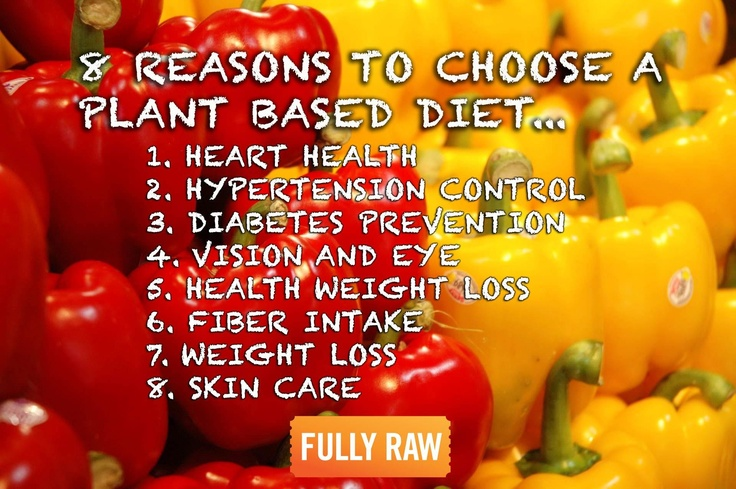 how plant based diets are healthier than meat based diets I discovered that a typical western diet, one that is heavy in meat, dairy, and other animal products, also has a very high carbon and water footprint, significantly contributes to climate change and land degradation, and in the 14 years since i first adopted a plant-based diet, i've been healthier than ever.
