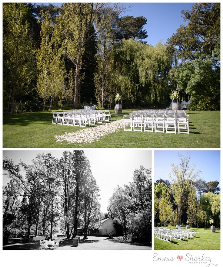 52 best adelaide weddings images on pinterest receptions glen ewin outdoor ceremony set up americana chairs rose petal aisle and big urns of flowers created by fabulous functions junglespirit Gallery