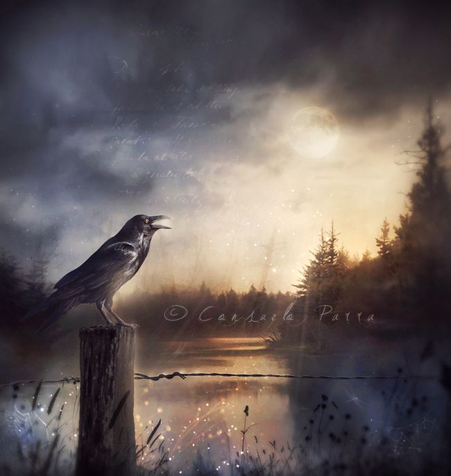 the raven poem analysis pdf