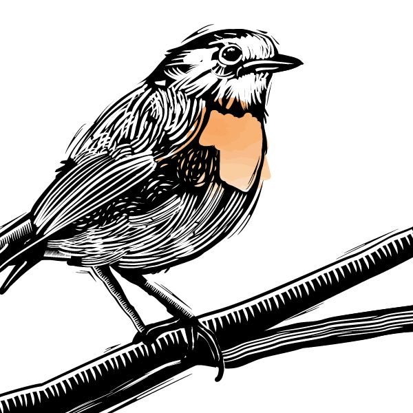how to cut in adobe illustrator